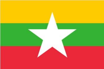 缅甸电子签证—资料扫描